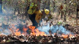 Bombero sofoca un incendio forestal